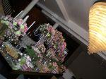 Nectar Flores Decoração