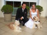 casamento Bruna e Daniel