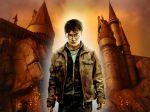 Harry Potter  painel festa infantil banner dkorinfest (10)