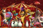 Madagascar   painel festa infantil banner dkorinfest (8)