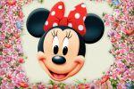 Minnie Mouse Vermelha painel festa infantil banner dkorinfest(18)