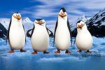 os pinguins de madagascar painel festa infantil banner dkorinfest (10)