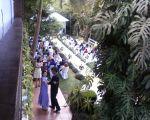 Casamento- Chácara - Ouro Fino Ribeirão Pires - Kit 3 = Dj+ Som+Iluminação+ Telão+ Sonorização Cerimonial + Retrospectiva Narrada. contato@edytronik.com  4511-3548 Whats App: 9 9571-4191