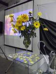 Casamento - Chácara Fagundes em Mauá SP  Kit Básico ( Dj+Som+Iluminação Básica )  Em Parceria com Buffet Amor Eterno - Mauá SP Tels. 3421-3331 / 4790-2084 / 2375-8985 dj em mauá: www.edytronik.com