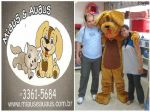 Mascote Big - Pet Shop Miaus e Au Aus - Brasília DF