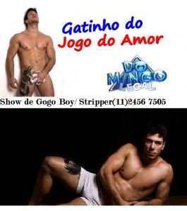 gogo boy 7