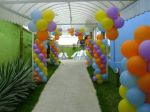 Mania de Festas - Backyardgans