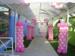 Mania de Festas - Princesas