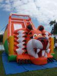 Tobogã Gigante Tigre