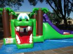 Kid Play Crocodilo com Escorregador