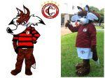 Mascote Raposão -Campinense Clube -Campina Grande - PB
