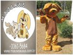 Mascote Big - Miaus e Au Aus - Brasília - DF