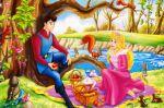 a bela adormecida painel festa infantil banner (6)