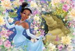 a princesa e o sapo painel festa infantil banner (4)