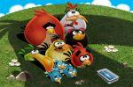 angry bird painel festa infantil banner (7)