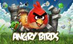 angry bird painel festa infantil banner (1)