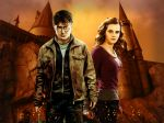 Harry Potter  painel festa infantil banner dkorinfest (12)