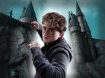 Harry Potter  painel festa infantil banner dkorinfest (8)