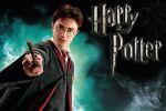 Harry Potter  painel festa infantil banner dkorinfest (2)