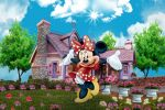 Minnie Mouse Vermelha painel festa infantil banner dkorinfest(10)