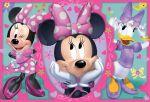 Minnie Mouse Rosa painel festa infantil banner dkorinfest (21)