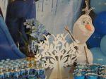 Decoração Provençal do Frozen