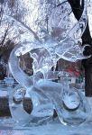 Cursos de esculturas de Gelo para : decorações, exposições e eventos.