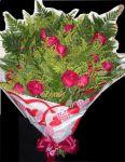 Buquê de rosas 1 dúzia - Rosas vermelhas