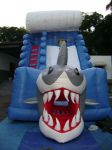 Tobogã Gigante Tubarão