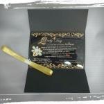 Convite com Envelope ( TODOS OS TEMAS ) R$ 3,00