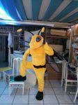 Mascote Abelha FC MS